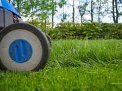elektrischer Rasenmäher, Gartenarbeit